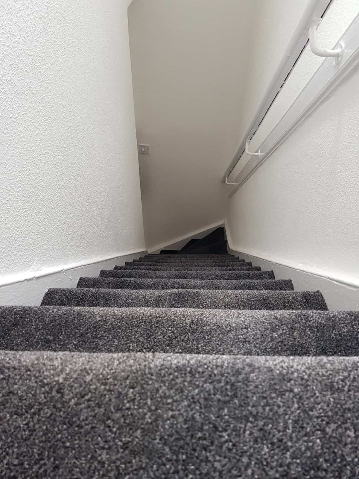 Stairs with carpet in full renovated house